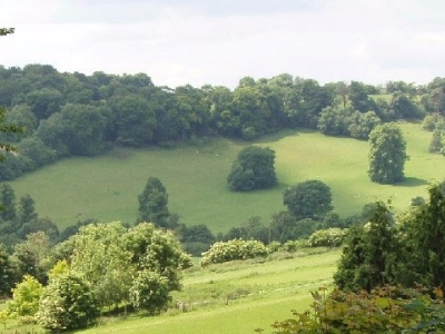 Beautiful green rolling hills and countryside